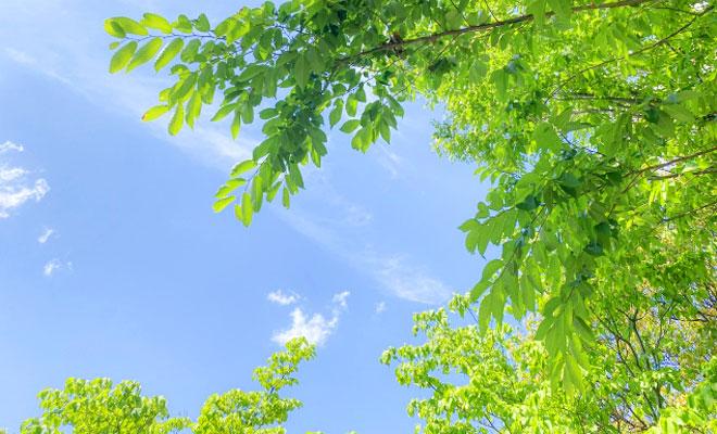 200601名古屋コラム_2